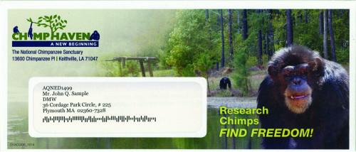 ChimpHaven Env_01