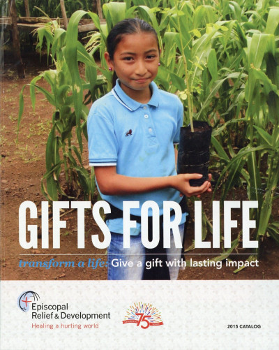 Gold Awards Episcopal Relief and Development