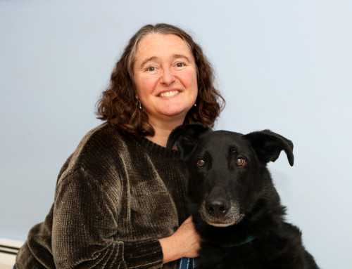 Michelle Thevenin, St. Hubert's Animal Welfare Center